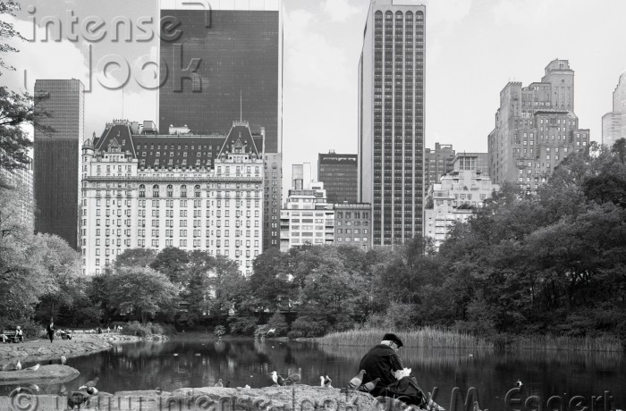 NYC – Central Park